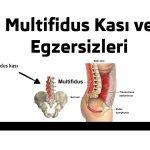 Multifidus Kası ve Egzersizleri