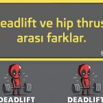 Deadlift ve hip thrust arası farklar.
