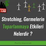 Stretching, Germelerin Toparlanmaya Etkileri Nelerdir ?