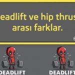 Deadlift ve hip thrust arası farklar.